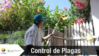 control de plagas 2
